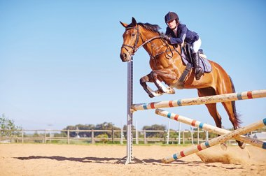 Health News summer 2017 WRMC supports equestrian sports